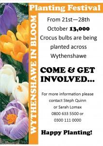 Wythenshawe in Bloom Template for Media sites